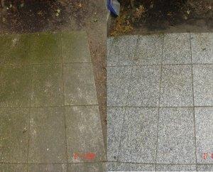 Natursteinsanierung Steinplatten Moosbefall